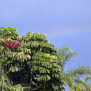Umbrella Tree With Rainbow And Flower Poster