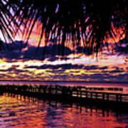 Under The Palms Sunrise Poster