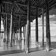 Under The Pismo Pier Poster