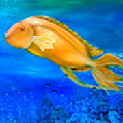 Undersea Journey Poster