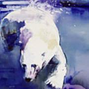 Underwater Bear Poster