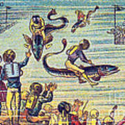 Underwater Race, 1900s French Postcard Poster