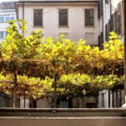 Urban Bower. Milan, Italy. Poster