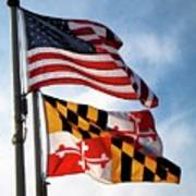 Us And Maryland Flags Poster