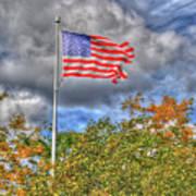 Us Flag 8091 Poster