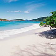 Us Virgin Islands, St. John, Cinnamon Poster