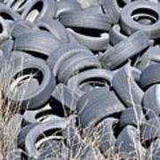Used Tires At Junk Yard Poster
