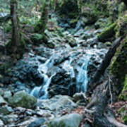 Uvas Canyon Waterfall I Poster