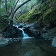 Uvas Canyon Waterfall II Poster