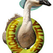 Vacation Time For Summer Goose Poster