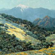 Valley Splendor Poster
