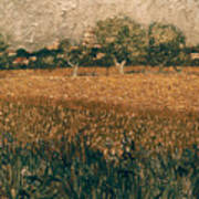 Van Gogh: Arles, 1888 Poster
