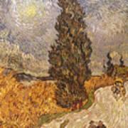 Van Gogh: Cypresses, 1889 Poster