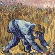 Van Gogh: The Reaper, 1889 Poster