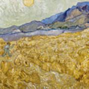 Van Gogh: Wheatfield, 1889 Poster