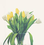 Vase Of Tulips Poster