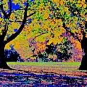 Vasona Two Oaks Fall Poster