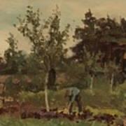 Vegetable, Willem Witsen, 1885 - 1922 Poster