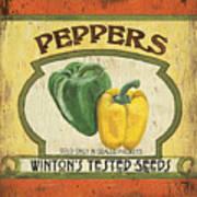 Veggie Seed Pack 2 Poster by Debbie DeWitt