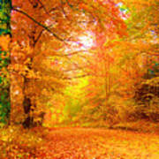 Vermont Autumn Poster