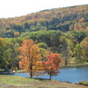 Vermont Pond Poster