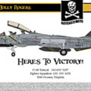 Vf-103 Jolly Rogers Poster