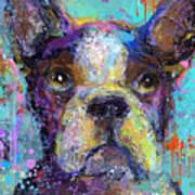 Vibrant Whimsical Boston Terrier Puppy Dog Painting Poster by Svetlana Novikova