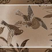 Victorian Birds In Sepia Poster