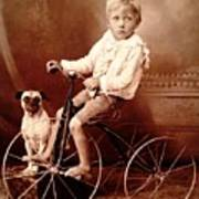 Victorian Boy With Pug Dog And Tricycle Circa 1900 Poster