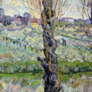 View Of Arles Poster