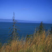 View Of Kachemak Bay, Alaska Poster