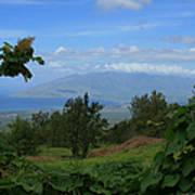 View Of Mauna Kahalewai West Maui From Keokea On The Western Slopes Of Haleakala Maui Hawaii Poster