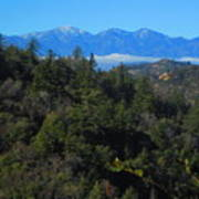 View Of Mount Baldy From The San Bernardino Mountains Poster