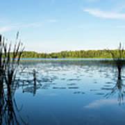 View Of The Lake Enajarvi Poster