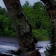 Viewing Tahquamenon Lower Falls Upper Peninsula Michigan Panorama 02 Poster