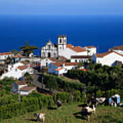 Village In The Azores Poster