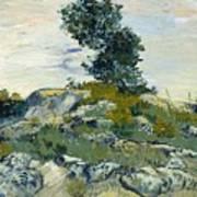 Vincent Van Gogh, The Rocks Poster