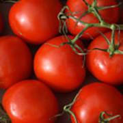 Vine Ripe Tomatoes Fine Art Food Photography Poster