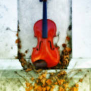 Vines And Violin Poster