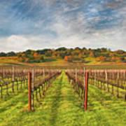 Vineyard Convergence Poster