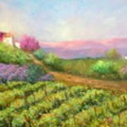 Vineyard Spring Poster