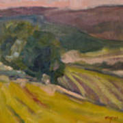Vineyards Of The Luberon Poster