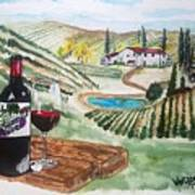 Vineyards Of Tuscany  Poster