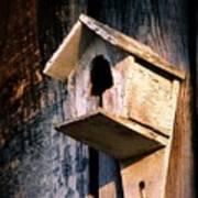 Vintage Birdhouse Poster