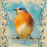 Vintage Bluebird With Flourishes Poster