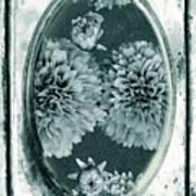 Vintage Glass Cyanoplate Dahlias Poster