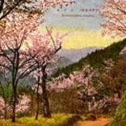 Vintage Japanese Art 14 Poster