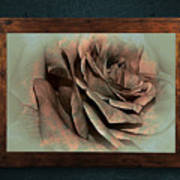 Vintage Rose On Old Wall 2 By Kaye Menner Poster