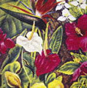 Vintage Tropical Flowers Poster