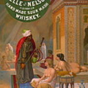 Vintage Whiskey Ad 1883 Poster